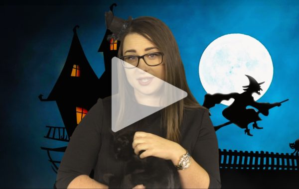 Nietypowe święta: Dzień czarnego kota