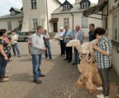 Dinozaury z Łukowa – plener rzeźbiarski w Muzeum Regionalnym w Łukowie