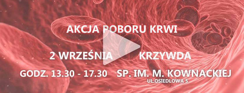Kolejna akcja krwiodawców w Powiecie Łukowskim