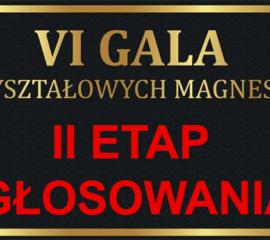 II Etap VI Plebiscytu Kryształowych Magnesów – głosowanie trwa do 13 lutego 2019 r.